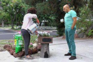 چهارچوب – محیط زیست